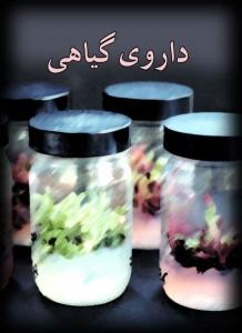 دانلود کتاب داروی گیاهی