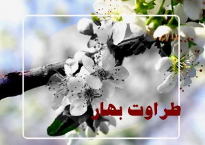 taravatbahar 300x212 دانلود رمان طراوت بهار